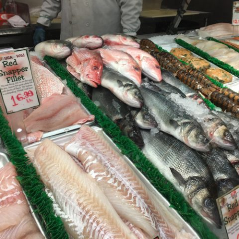 fish-case